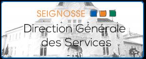 dgs  Direction Générale des Services dgs