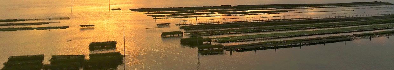 Fête de L'huître, Lac côté Seignosse